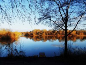 Lenches Lake, Worcestershire